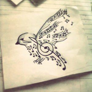 Notas de ave